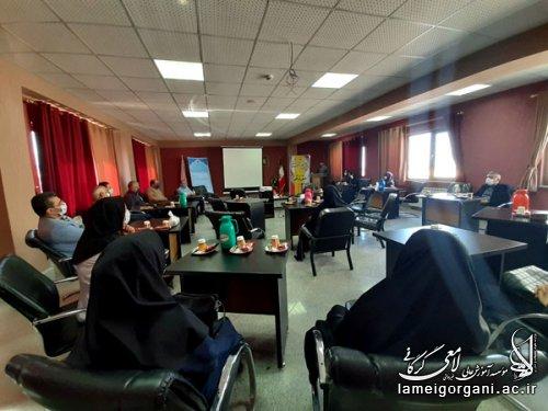 برگزاری جلسه هم اندیشی و بررسی مشکلات آموزش مجازی با اساتید